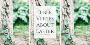 Bible verses about Easter to bring our focus back to the real celebration of the resurrection of Jesus.