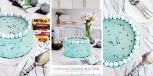 This Chocolate Chip Speckled Egg Cake is made with French vanilla cake & a homemade buttercream frosting that is speckled with chopped chocolate chips.