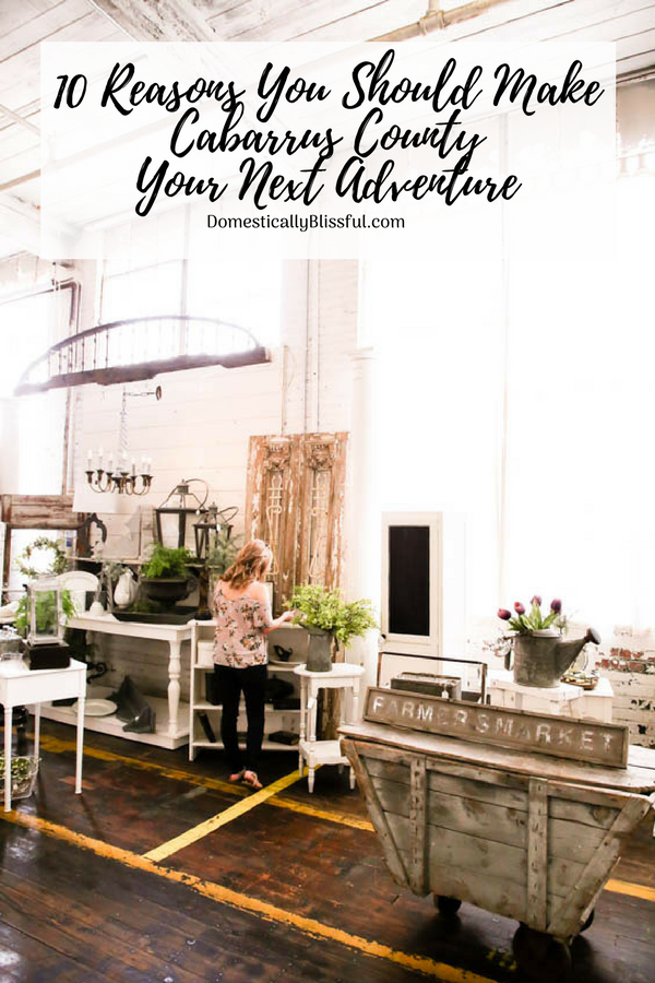 10 reasons you should make Cabarrus County your next adventure & why your whole family will love it!