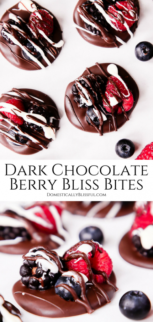 These Dark Chocolate Berry Bliss Bites are the perfect little sweet treat dessert for those who love fresh summer berries & rich dark chocolate.
