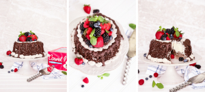 Personalize your very own Very Berry Chocolate Ice Cream Cake with dark chocolate, fresh berries, & sprigs of fresh mint for any occassion!