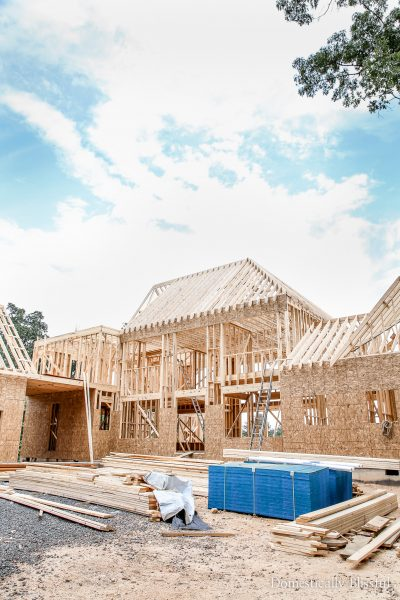 Fourth Month of House Building