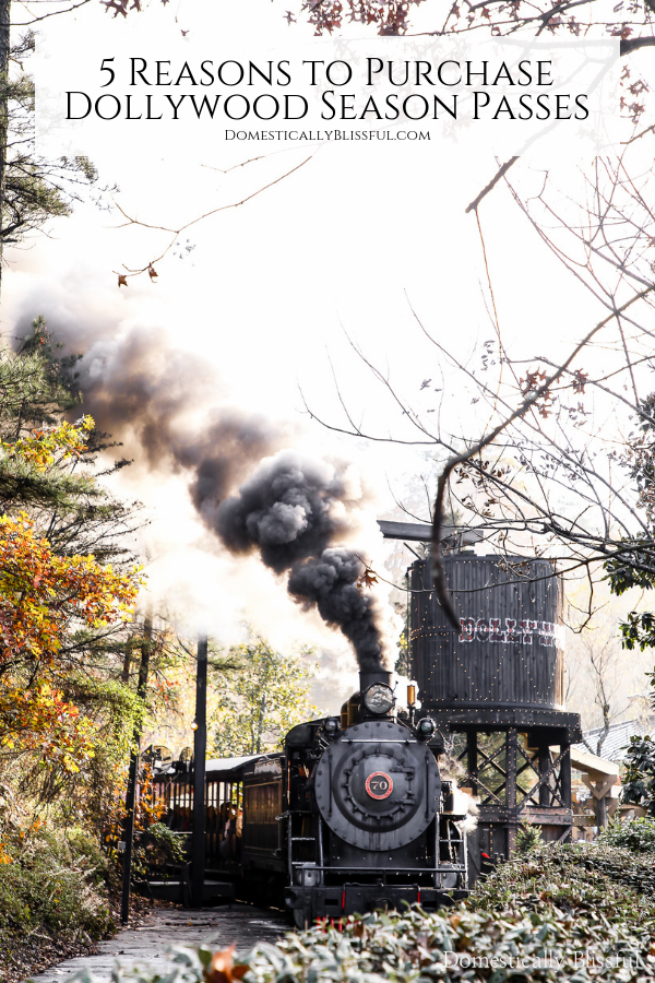 5 reasons to purchase Dollywood season passes so that you can enjoy the fun all year long!