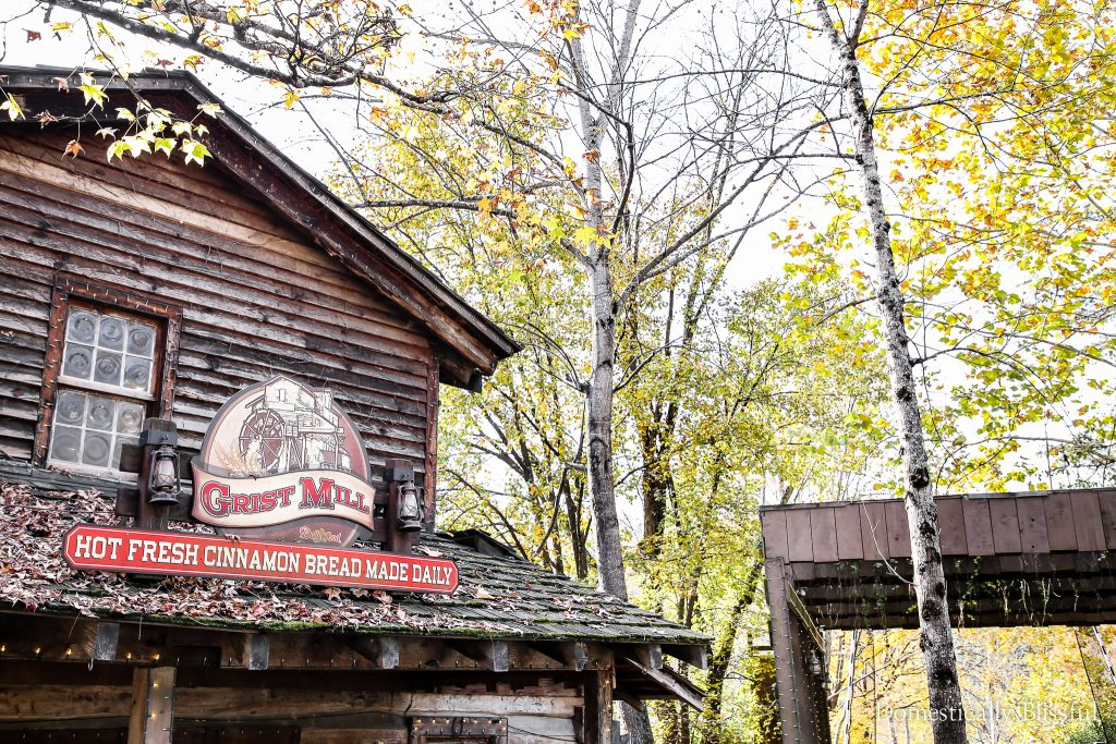 5 reasons to purchase Dollywood season passes so that you can enjoy thefun all year long!