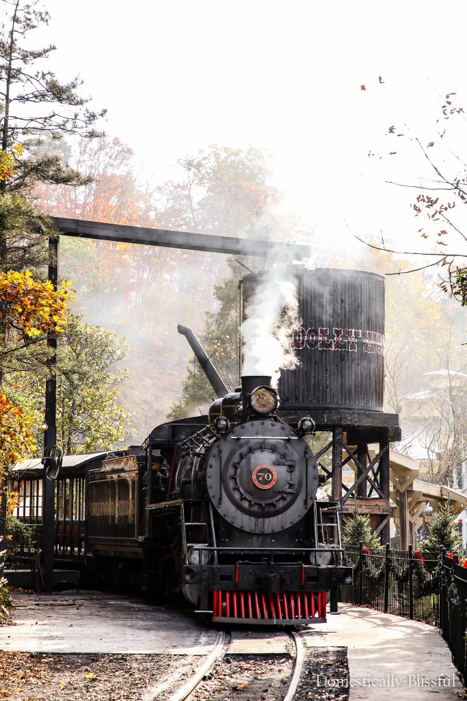 5 Reasons to Purchase Dollywood Season Passes - Domestically