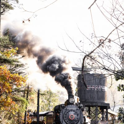 5 Reasons to Purchase Dollywood Season Passes
