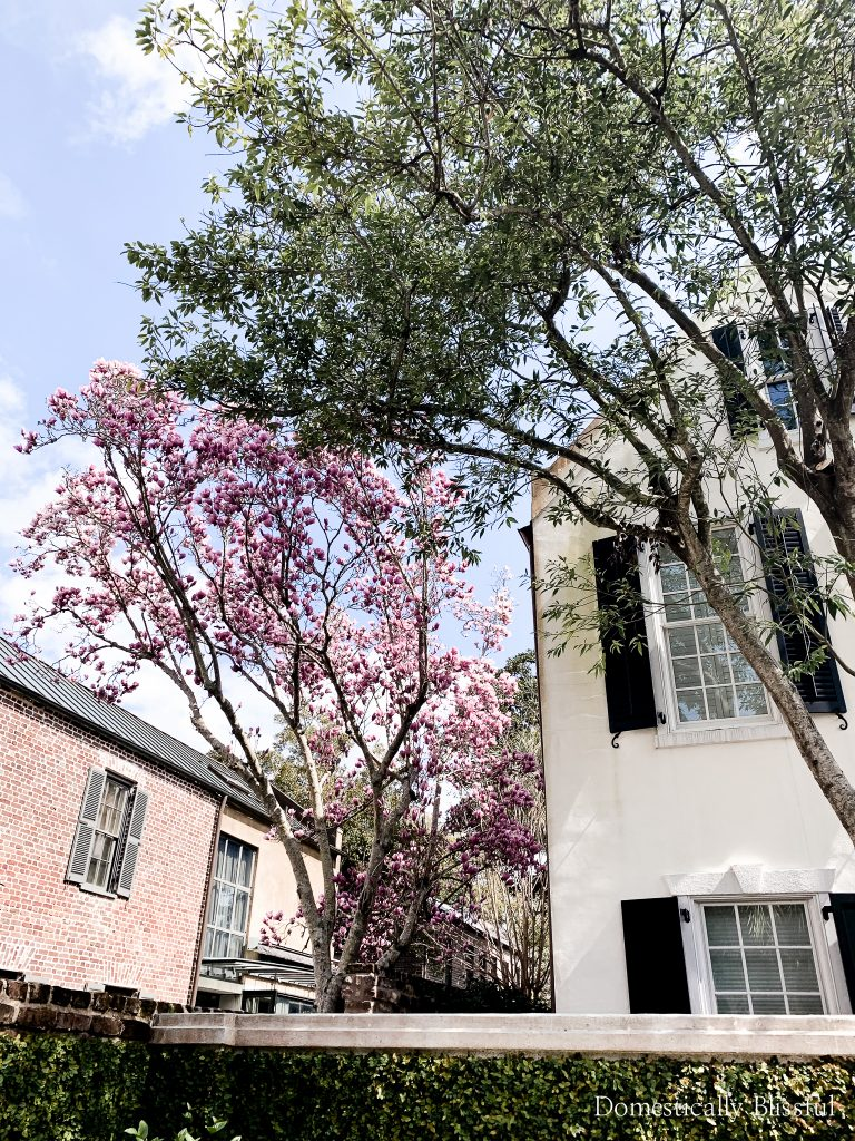 3 spring dresses for Easter that you'll want to wear all season & a peek at our fun spring break weekend getaway to Charleston, South Carolina.