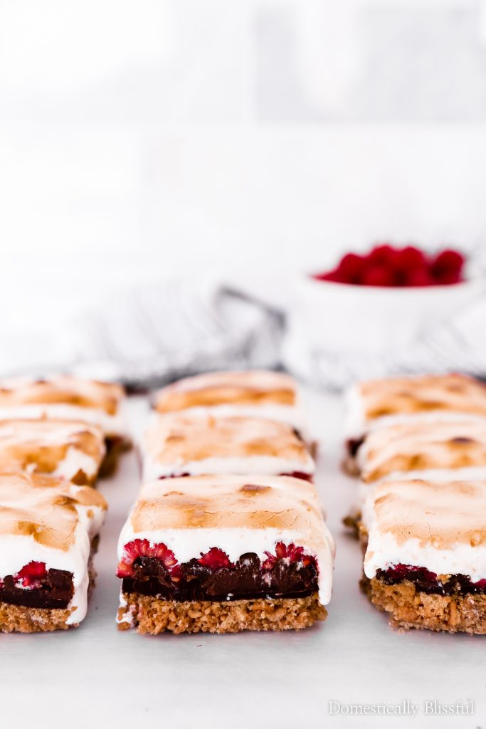 These Raspberry Nutella S'mores Bars are an easy baked dessert for summer parties & as a rainy summer day treat.