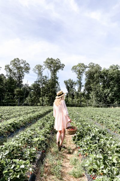Strawberry picking in north Georgia on a beautiful May day in a cotton linen dress, sunhat, & heart-shaped sunglasses.