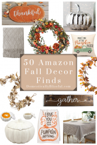 50 Amazon fall decor finds to help you decorate your home for the fall & Thanksgiving season!