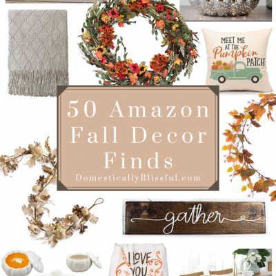 50 Amazon Fall Decor Finds
