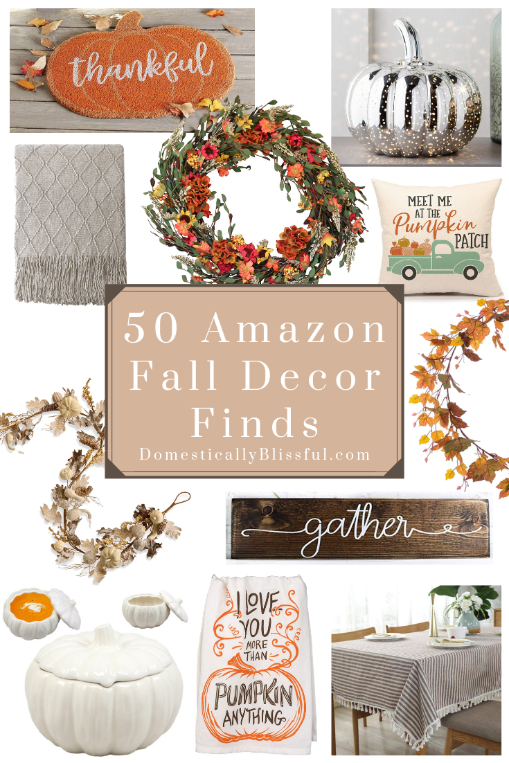 50 Amazon Fall Decor Finds - Domestically Blissful