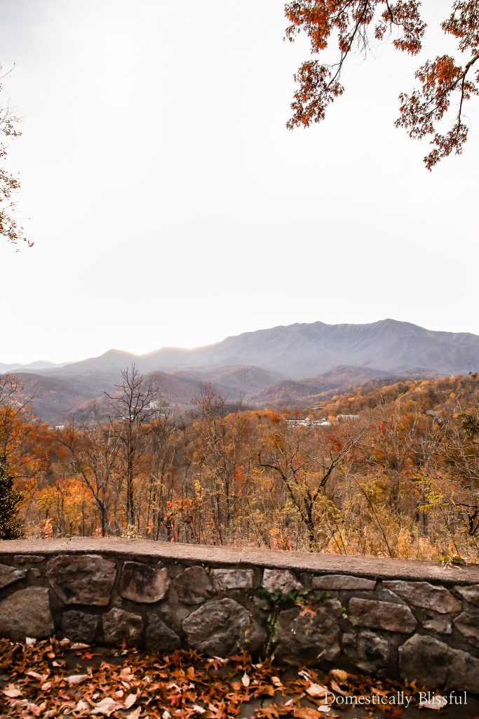 3 reasons to visit Pigeon Forge this season with your family and friends.