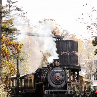 3 Reasons to Visit Pigeon Forge