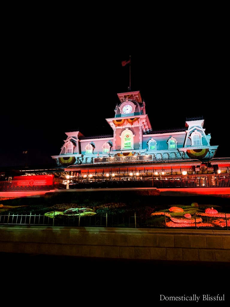 5 Ways to Visit Disney World When It's Closed to the general public.