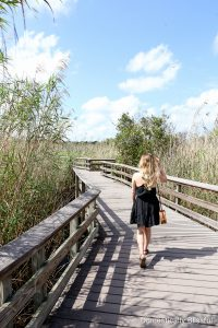 2 Fun Experiences in South Florida, plus two sweet treats you will love!