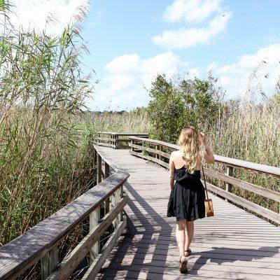2 Fun Experiences in South Florida
