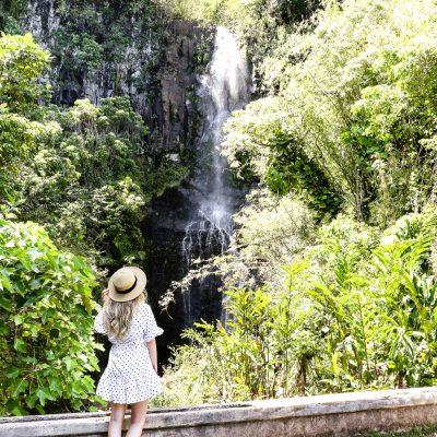 20 Incredible Stops on the Road to Hana Maui